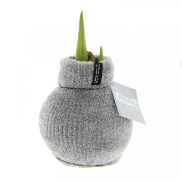 Wax Amaryllis Fashionz Cozy Fluffy Grijs
