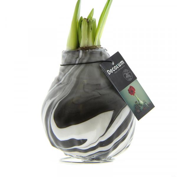 Wax Amaryllis XL Artooz Black